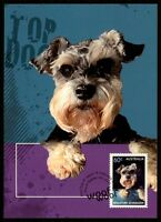 AUSTRALIA MK HUNDE SCHNAUZER HUND DOG CHIEN MAXIMUMKARTE MAXIMUM CARD MC CM bq23
