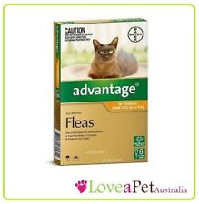Advantage Flea Treatment For Small Cats Under 4kg 6 pack