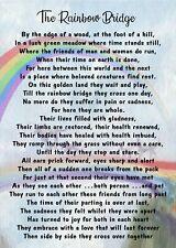 Waterproof Rainbow Bridge Pet Bereavement Graveside Memorial keepsake Card Poem