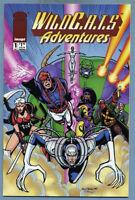 Wildcats Adventures #1 1994 Jeff Mariotte Ty Templeton Image Wildstorm Comics