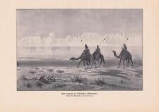 Fata Morgana desierto África karawanne camellos presión de 1903