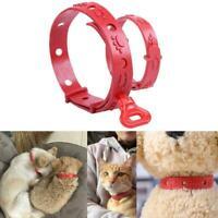 Haustier Hund Katze Welpen Schutz Halsband Keine Floh Zecke Kragen Band-Hal M7Z8