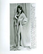 JOEY HEATHERTON BUSTY LEGGY WHERE LOVE HAS GONE ORIGINAL 1964 AP WIRE PHOTO