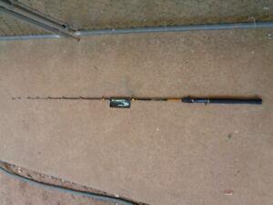 6' 1PC Roddy Gator Tail RG-22