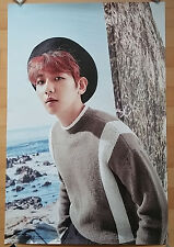 EXO 2017 Season's greetings BaekHyun Poster, Unfolded Poster, Official Poster