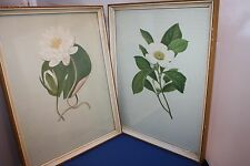 """Two old framed pictures """"Water Lily & White Bay"""""""