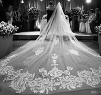 Wedding Veils Lace Appliqued Long Cathedral Length Bridal Accessories for Girls