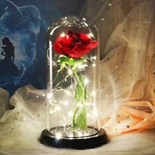 Beauty And Beast Rose In Flask LED Rose Flower Light Black Base Glass Dome