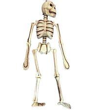 50.8cm Réaliste en Mouvement OS Halloween Suspendu Horreur Squelette Fête Déco
