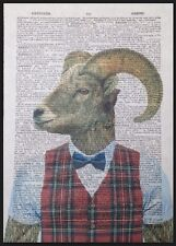 Vintage Ram Sheep Print Dictionary Page Wall Art Picture Animal Red Tartan