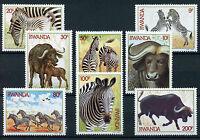 Rwanda 1984 MNH Zebra & African Buffaloes 8v Set Buffalos Wild Animals Stamps