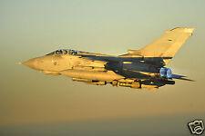 RAF Panavia Tornado GR.4 No 12 Squadron Iraq War,Photo 12x8 inch 2008