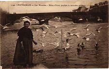 CPA  Chateaulin - Les Mouettes - Hotes d'hiver pendant la mauvaise ...  (205938)