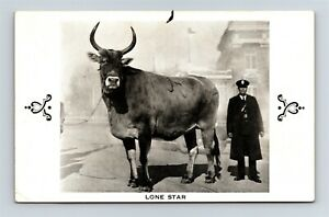 Postcard TX San Antonio Texas Lone Star Worlds Largest Cow c1930s AB19