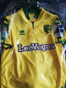 Norwich city football shirt, player issue James husband