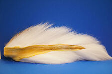 Bucktail Northern xl wapsi u.s.a. Blanc