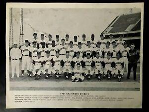 RARE 1964 BALTIMORE ORIOLES ORIGINAL TEAM (w/ Names) PHOTO - Brooks, Aparicio,..