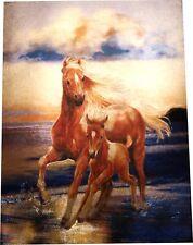 Alubild Alu-Bild : Pferd, Pferde, Stute m. Fohlen u. am Wasser Meer Ozean #1847
