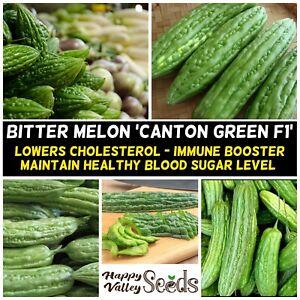 BITTER GOURD Canton Green 5 Seeds TROPICAL ASIAN Vegetable Garden BITTER MELON