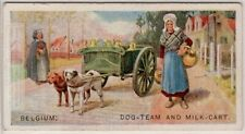 Dog Team Pulling Milk Delivery Cart Wagon In Belgium 1920s Trade Ad Card