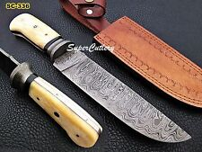 Hand Forged Damascus steel Bowie Knife Damascus Bolster Camel Bone