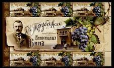 Viticultura. variedad de vid cabernet sauvignon. 6w+zf. ucrania 2010
