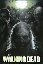 # Z192 The Walking Dead Poster 24x36