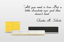 Vinyl Wall Decal Sticker Room Decor Saings Quotes Charles M. Schulz Cool F2045