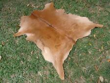 New Cowhide Rug Calfskin Calf Hide caramel Longhorn Skin P132