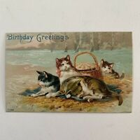 Antique Embossed Postcard Mother Cat With Kittens Birthday Greetings 7768