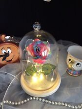BEAUTY AND THE BEAST DISNEY INSPIRED  ENCHANTED RAINBOW ROSE IN A GLASS DOME
