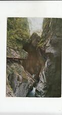 BF21729 gorges de la fou arles sur tech p o ;es canyon  france  front/back image