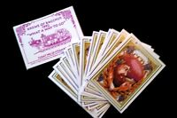 "Collectible Vtg 1992 New Orleans 3.5"" Mardi Gras 26-Float Cards Krewe Of Bacchus"