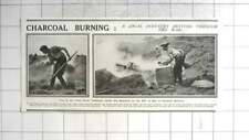 1916 Charcoal Burning Revived Throughout War, New Forest, Lake District