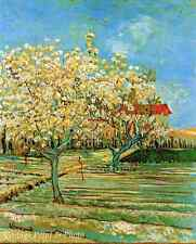 Orchard in Blossom by Vincent Van Gogh - Art Trees Field Spring 8x10 Print 0320
