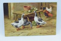 Vintage J Salmon Postcard Artist Drawn E Hunt Ducks