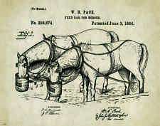 Horse Rodeo Patent Print Art Poster Western Antique Cowboy Saddle Spurs PAT248