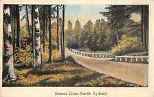 North Sydney Greetings Scenic Drive Antique Postcard J76620