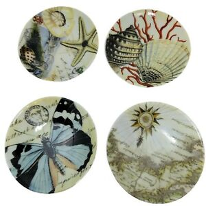 Pottery Barn (Set of 4) Trinket  Dishes Nautical  Shells Starfish Map Butterfly