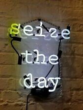 New Seize The Day White Acrylic Bedroom Gift Neon Light Sign 14""