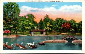 Vtg 1930's Bird Lake in Livingston Park, Jackson Mississippi MS Postcard
