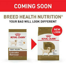 ROYAL CANIN BREED HEALTH NUTRITION Labrador Retriever Adult dry dog food 30 lb.