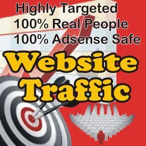 5,000 Real Visitors! HIGHLY TARGETED website traffic! 100% Adsense Safe