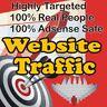 10,000 Real Visitors! HIGHLY TARGETED website traffic! 100% Adsense Safe
