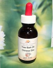 Bark Essence #20 Connecting with Opportunity -Advanced Alchemy 50ml Chinese Elm