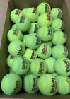 100 used tennis balls, mostly Wilson s