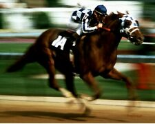 LOT of (2) TWO SECRETARIAT 8 X 10 PHOTO HORSE RACING RON TURCOTTE