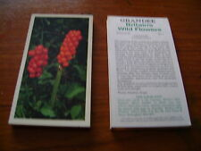 Grandee Britains Wild Flowers 1986 Complete Full Set By John Player & Sons