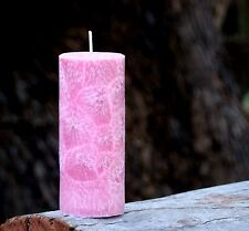 200hr RASPBERRY LEMONADE Icy Summer Softdrink Delicious Scented Natural CANDLE