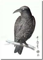 "Vintage Japanese Bird Art CANVAS PRINT~ Asian Crow 16""X12"""